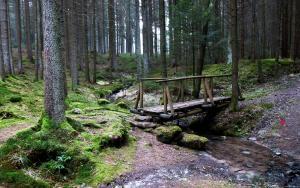 Brücken Stege-17
