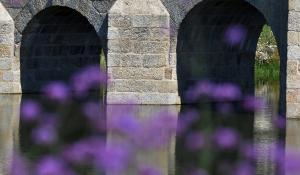Brücken Stege-22