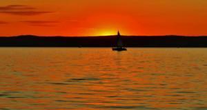 drei Boote auf dem Neusiedlersee