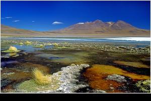 Hochland Lagune BOLIVIEN