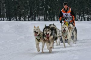 Walter Gradl Schlittenhunde Rennen